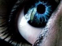 Исследователи из Беркли случайно изобрели очки, избавляющие от дальтонизма