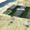 Sahara Forest Project — проект озеленения пустынь