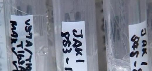 Экспериментальная вакцина не спасла врача из Либерии