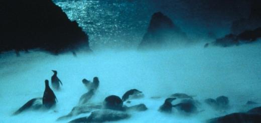 В России началась подготовка к антарктической метеоритной экспедиции, участники которой будут искать упавшие на Землю космические объекты.