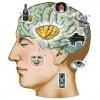 Несколько упражнений для мозга — очень странных, но очень полезных