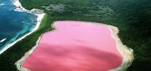 Видео на YouTube помогло разгадать тайну розового озера в Австралии