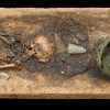 Восстановлен рецепт меда викингов