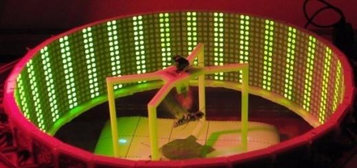 Исследователи из США создают мотыльков-киборгов с дистанционным управлением