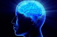 8 самых полезных знаний
