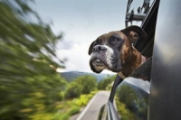 Автомобили работают более экономично, когда открыты окна, а кондиционер выключен