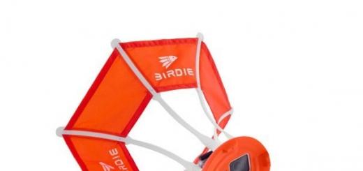 Аксессуар Birdie для экшн-камер позволяет делает селфи в воздухе