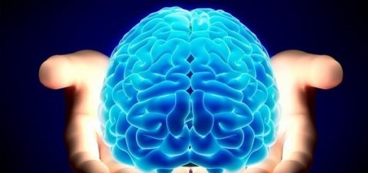 Исследователи из США обнаружили в мозгу механизм включения и выключения сознания