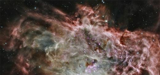 Астрономы совершили важный шаг на пути к пониманию того, как во Вселенной формировались звёздные скопления. В этом им помогли снимки, полученные с помощью космической рентгеновской обсерватории NASA Чандра (Chandra X-ray Observatory) и нескольких инфракрасных телескопов.