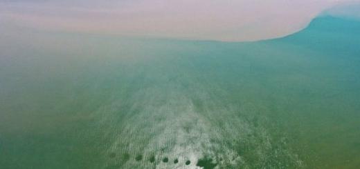 Минприроды встревожено обсуждением строительства ГЭС на реке Селенга