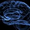 10 самых уникальных персон с феноменальной памятью