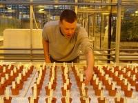 В ближайшие годы появится система для выращивания овощей на Марсе