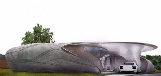 Первый дом «свободной» формы, напечатанный на 3D-принтере