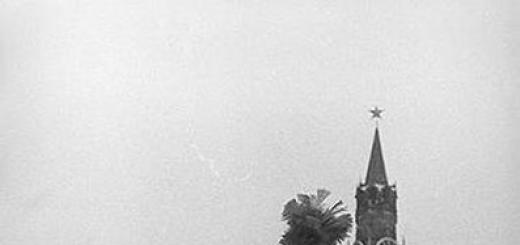 45 лет назад Огонек рассказывал о последнем солдате императора Наполеона, приехавшем в Москву.