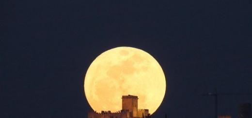 Для существования земной жизни Луна не нужна