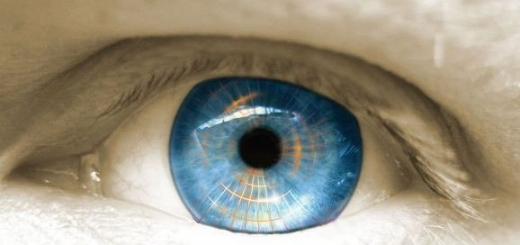 Человеческую сетчатку вырастили из искусственных стволовых клеток