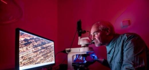 Медь предотвращает распространение вирусов — новейшие исследования