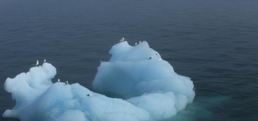Процесс потепления климата на территории России идет в два раза быстрее, чем в среднем на Земле. К быстро теплеющим территориям также относится Аляска.