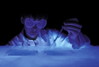 Современные носители памяти не только стремительно устаревают, но и просто стареют. Магнитные пленки, DVD, диски Blue-ray способны сохранить запись максимум десятки лет. Чтобы информация оставалась в целости веками и тысячелетиями, придется воспользоваться рецептом природы – молекулами ДНК.