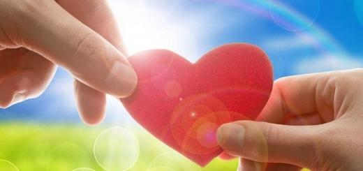 Любовь с точки зрения науки