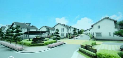 Panasonic создаст экологический город